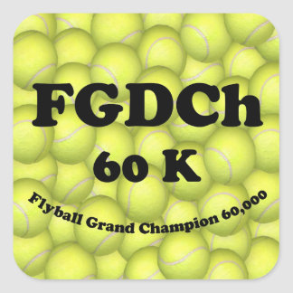 FGDCh 60K, Flyball Master Champion Square Stickers