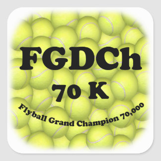 FGDCh 70K, Flyball Master Champion Square Stickers