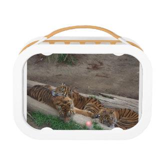 Fiambrera de los tríos del tigre