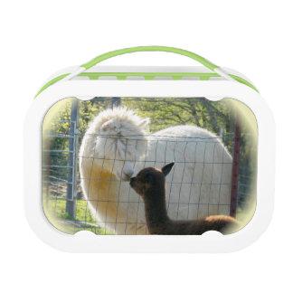Fiambrera del beso de la alpaca del bebé