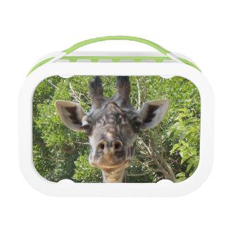 Fiambrera del retrato de la jirafa