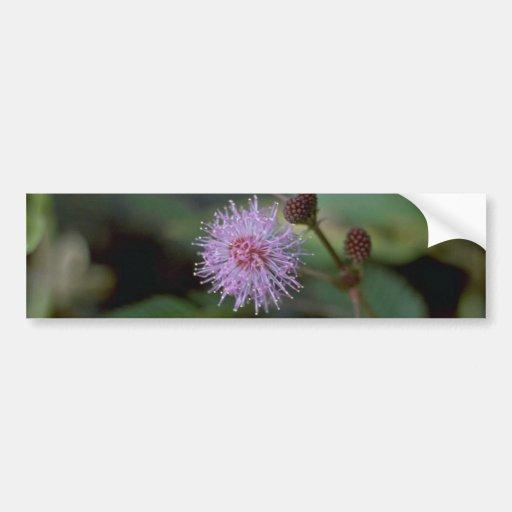 Fiber Flower Car Bumper Sticker