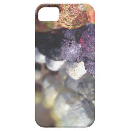 Fiber iPhone 5 Cases