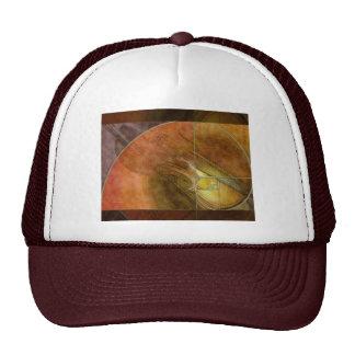 Fibonacci Violin Abstract 2 Trucker Hat