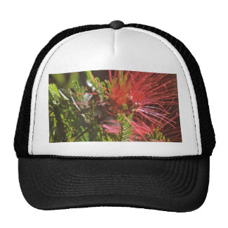 Fibred Red Flowers Mesh Hat