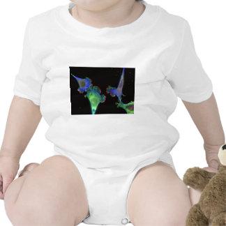Fibroblastos embrionarios del ratón camisetas
