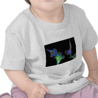 Fibroblastos embrionarios del ratón camiseta