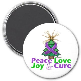 Fibromyalgia Peace Love Joy Cure 3 Inch Round Magnet