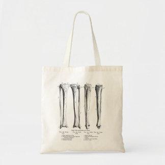 Fibula & Tibia Bag