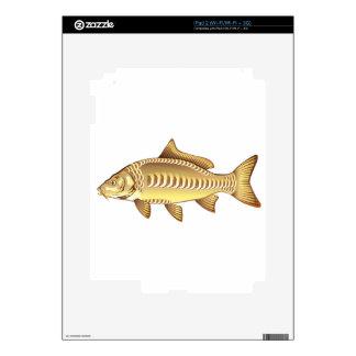 Fichero del diseño gráfico del arte del vector de iPad 2 skin