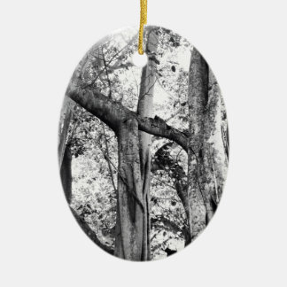 Ficus Altissima In Black And White Double-Sided Oval Ceramic Christmas Ornament