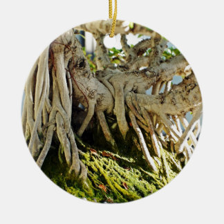 Ficus Banyan Bonsai Tree Roots Double-Sided Ceramic Round Christmas Ornament