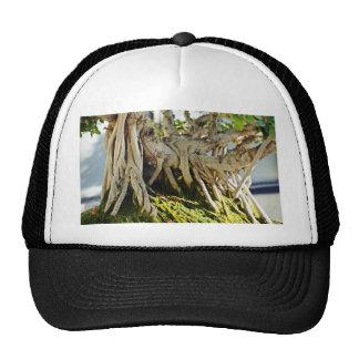 Ficus Banyan Bonsai Tree Roots Trucker Hat