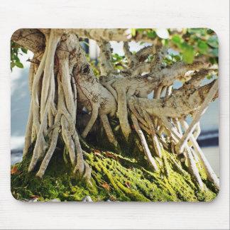 Ficus Banyan Bonsai Tree Roots Mouse Pad