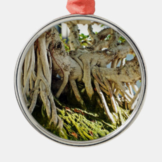Ficus Banyan Bonsai Tree Roots Round Metal Christmas Ornament