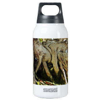 Ficus Banyan Bonsai Tree Roots SIGG Thermo 0.3L Insulated Bottle