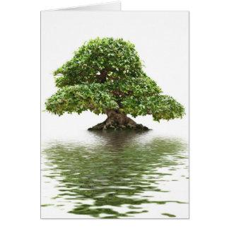 Ficus bonsai card