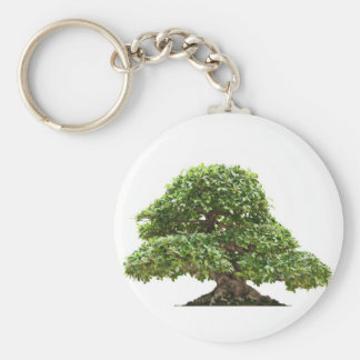 Ficus bonsai isolated basic round button keychain