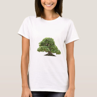 Ficus bonsai isolated T-Shirt