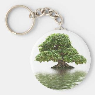 Ficus bonsai keychain