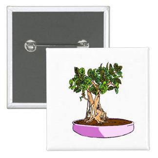 Ficus Bonsai Purple Tray Button