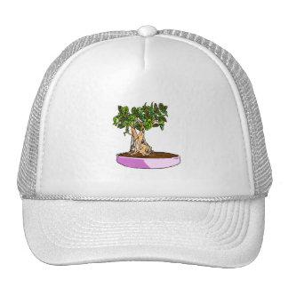 Ficus Bonsai Purple Tray Trucker Hat
