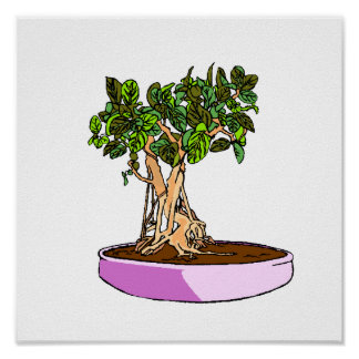 Ficus Bonsai Purple Tray Poster
