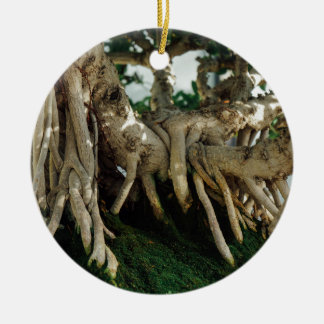 Ficus bonsai roots Double-Sided ceramic round christmas ornament