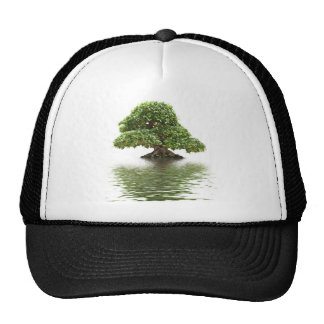 Ficus bonsai trucker hat