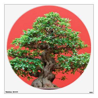 Ficus bonsai wall sticker