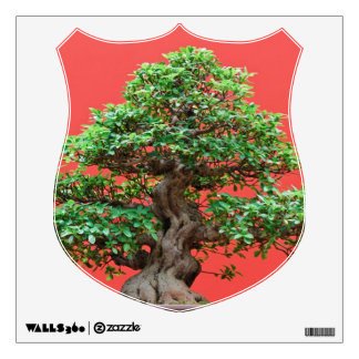 Ficus bonsai room stickers