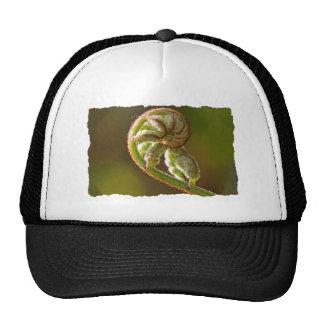 Fiddlehead Fern Trucker Hats