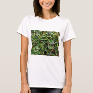 Fiddlehead Ferns T-Shirt