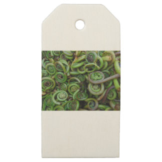 Fiddlehead Ferns Wooden Gift Tags