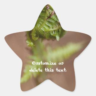 Fiddlehead Macro; Customizable Star Sticker