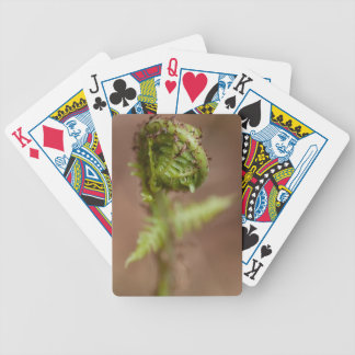 Fiddlehead Macro Bicycle Playing Cards