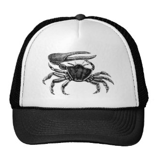 Fiddler Crab Drawing Trucker Hat