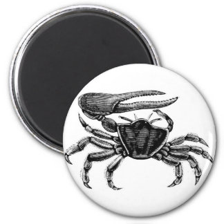 Fiddler Crab Drawing 2 Inch Round Magnet