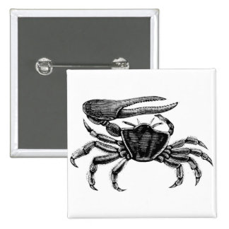 Fiddler Crab Drawing Pinback Button