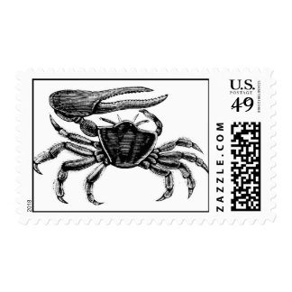 Fiddler Crab Drawing Postage