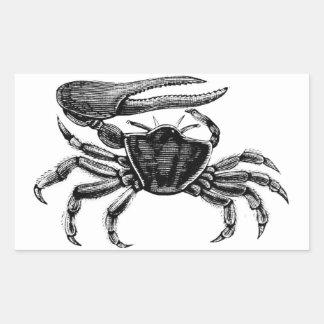 Fiddler Crab Drawing Rectangular Sticker