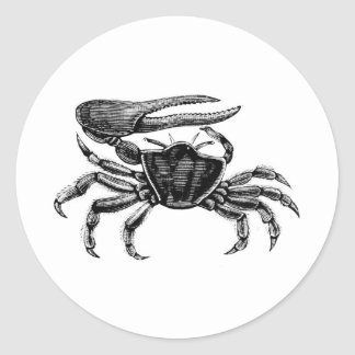 Fiddler Crab Drawing Round Stickers