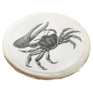 Fiddler Crab Drawing Sugar Cookie