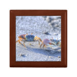 Fiddler Crab Jewelry Boxes