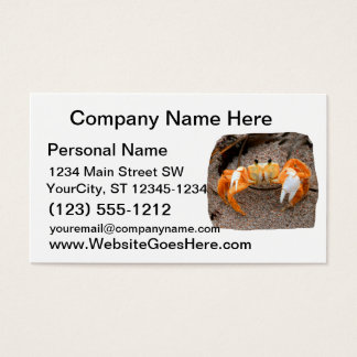Fiddler Crab On Beach Colorized Orange Business Card