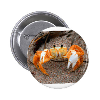 Fiddler Crab On Beach Colorized Orange Button