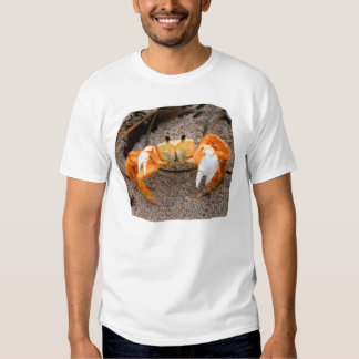 Fiddler crab on beach colorized orange on sand T-Shirt
