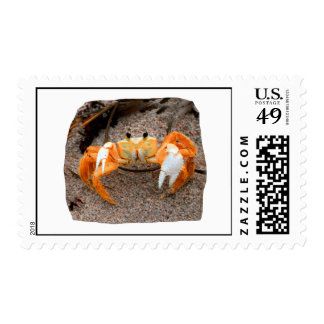Fiddler Crab On Beach Colorized Orange Stamps