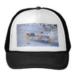 Fiddler Crab Trucker Hat