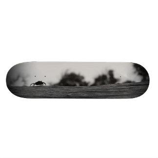 Fiddler in Black Custom Skate Board